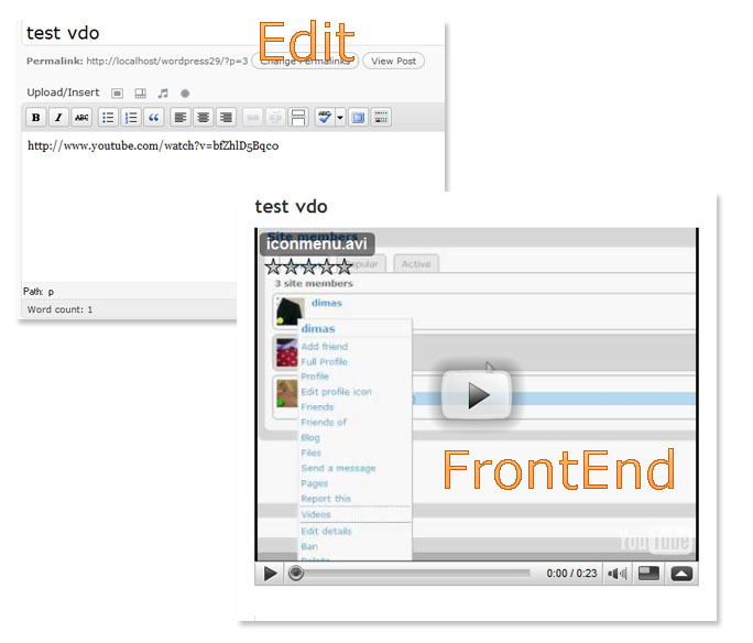 Wordpress 2.9 Video Embed