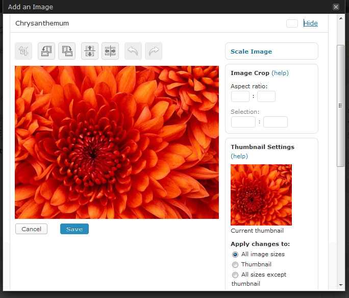 Wordpress 2.9 Image Edit